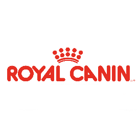 Royal Canin húmeda gatos